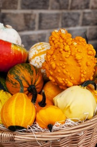 Food in Mesoamerica - squash